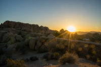 Sonnenaufgang Joshua Tree Nationalpark, CA