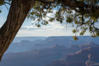 Grand Canyon South Rim, AZ