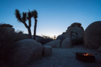 Campingplatz im Joshua Tree Nationalpark, CA